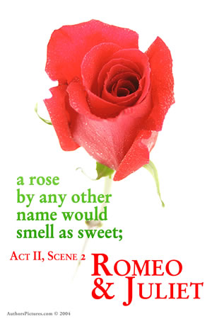 rose will be a raised by way of all various name